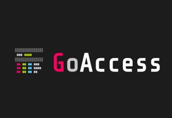 GoAccess: herramienta opensource para analizar accesslogs